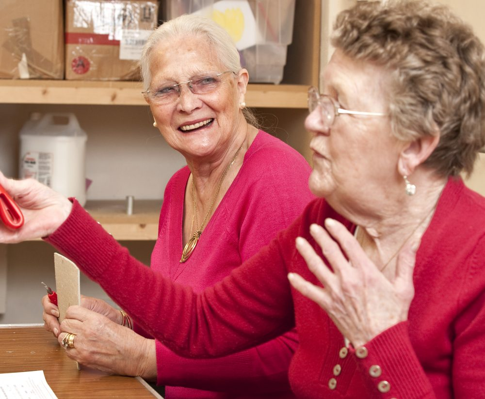 Council Sets Out Plans for Older People's Services